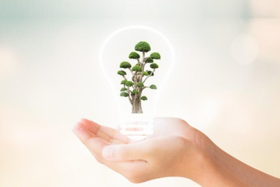 Servicios Ahorro de Energia